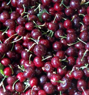 Dark-cherries