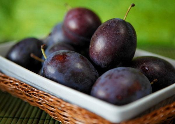 plum-Orchardfreshfruit