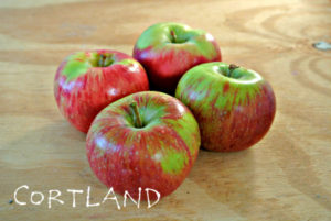 Cortland-Apples