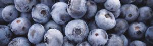 blueberries_footer-bg